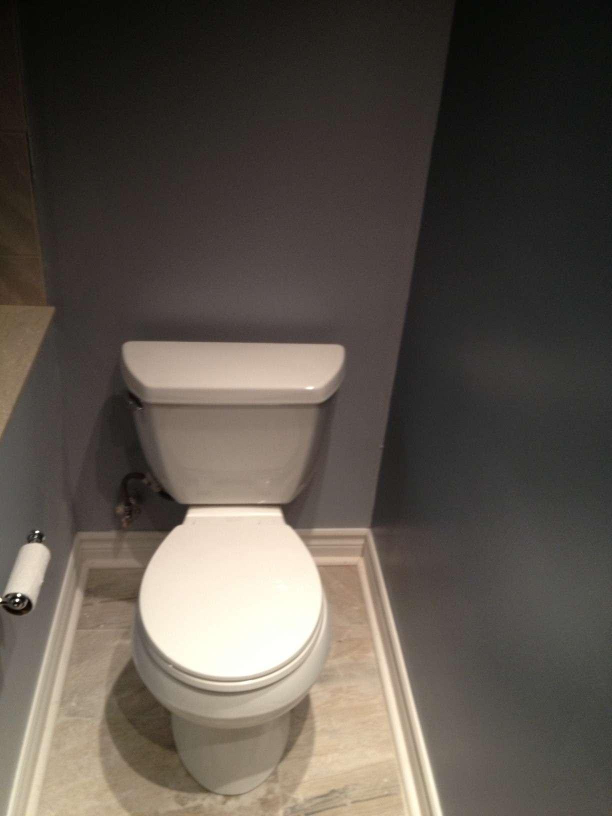 Graydon Complete Toilet